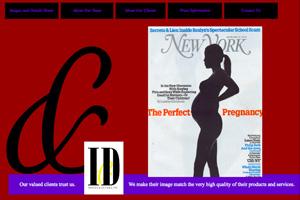 Layout for the Images and Details Web Site